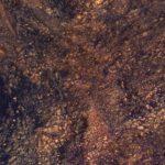 """NASA показало фото """"одиночества на Марсе"""""""