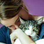 Кошки больше любят женщин – ученые