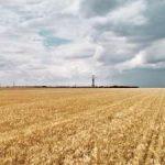 Новый актив «Газпром нефти» войдет в состав Оренбургского нефтедобывающего кластера