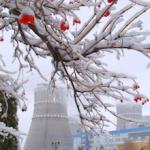 Ровенская АЭС остановила энергоблок №1 на плановый ремонт