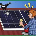 Стоит ли мыть солнечные панели?