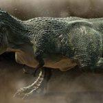 Ученые заявили, что у тираннозавров не было перьев