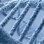 """Британские ученые нашли """"гены силы"""""""