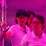 В Китае начата 200-дневная симуляция проживания на другой планете