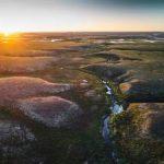 «Мессояханефтегаз» рекультивировал 2,6 млн кв. м арктической тундры