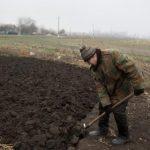 Отмена моратория на продажу земли: выживет ли украинский фермер
