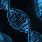 Генетики расшифровали ДНК людей возрастом 8 тысяч лет