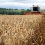 ЕС выделит Украине 26 млн евро на поддержку сельского хозяйства