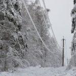 53 бригады «Россети Северо-Запад» устраняют повреждения после обильного снегопада в Псковской области