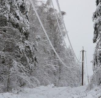 зима непогода