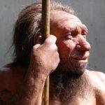 Обнаружено, что  современные люди имеют ДНК неандертальцев