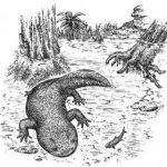Ученые нашли останки неизвестной саламандры возрастом 168 миллионов лет