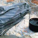КФУ намерен сотрудничать с «Татнефтью» по сланцевой нефти