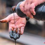 Российская нефть дешевле, но Москва всегда может прищемить белорусам пальцы