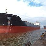 «Ростерминалуголь» отгрузило на экспорт 6 млн тонн угля с начала 2020 года