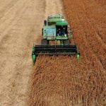 «Уравниловки быть не должно». Лукашенко поставил задачи чиновникам