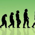 Ученые пересмотрели историю эволюции человека