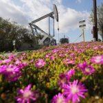Почему цены на нефть вернулись к росту