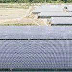 В Италии выращивают лимоны в солнечных теплицах мощностью 32 МВт