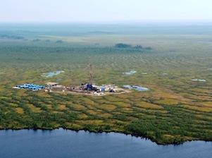 Гыданский полуостров Ямал ХМАО