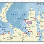 Российские студенты «обустроили» месторождение на нефтегазовом кейс-чемпионате ТПУ
