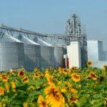 Украинская агрокомпания инвестирует в «зеленую» энергетику $170 млн