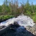 Отравленную воду из рек под Норильском откачивали прямо в леса