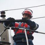 «Челябэнерго» устанавливает птицезащитные устройства в Еткульском районе