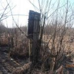 Злоумышленники спилили 14 опор ЛЭП и оставили на выходные без света жителей села Авдей в Забайкалье