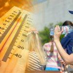 На юге России температура воздуха превысит 40ºC