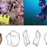 Впервые под водой нашли поселения первобытных людей
