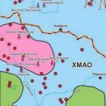 Ученые ИНГГ СО РАН: на юге ЯНАО в баженовской свите могут находиться промышленные скопления нефти