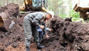 рекултивация загрязнения земли нефтью
