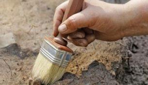 археолог кисть раскопки