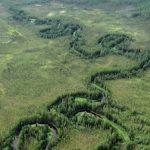 Геологические запасы Чонских месторождений составляют около миллиарда тонн нефти