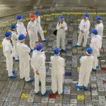29 октября из 15 энергоблоков АЭС пять находятся в ремонте