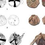 Найдены самые древние мячи Евразии