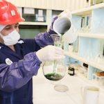 Росатом планирует построить единственный в мире урановый завод, работающий по безотходной технологии