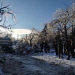 Предварительный ущерб от циклона в Приморье оценен в 266 млн рублей