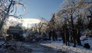 восстановление после ледяного дождя