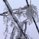 Власти Приморья оценили ущерб от снежного циклона в один миллиард рублей