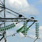 «Минскэнерго» с начала 2021 года установило на ЛЭП более 2000 птицезащитных устройств
