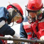 В Вологодской области аварийность в сетях свыше 6 кВ сократилась на 2%