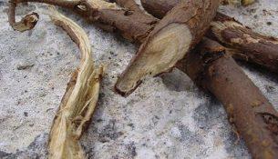 дрова, корень солодки