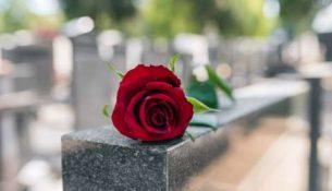 цветок на могиле
