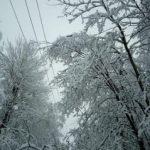 Снегопад нарушил электроснабжение 630 населенных пунктов и движение поездов – МЧС