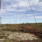 «ФСК ЕЭС» отремонтировала фундаменты опор на 124 ЛЭП на территории Западной Сибири, Урала и восточных регионов Приволжья