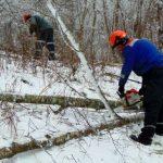 В Витебской области Белоруссии устранены повреждения в электрических сетях