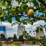 «Мосэнерго» в 2020 году снизило выбросы в атмосферу на 6,3%