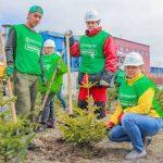 Праздник Весны и Труда «Восточный Порт» отметил массовым озеленением угольного комплекса